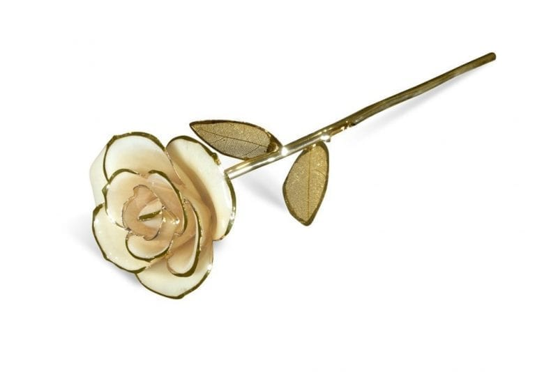 Beige Rose Gold Leaf Gift without Premium Display Case - Infinity Rose
