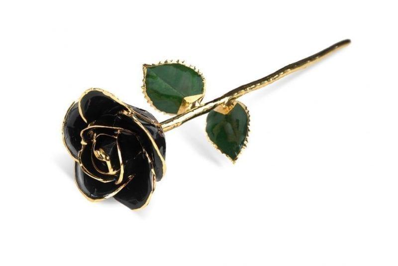 Black Rose Rose without Premium Display Case - Infinity Rose
