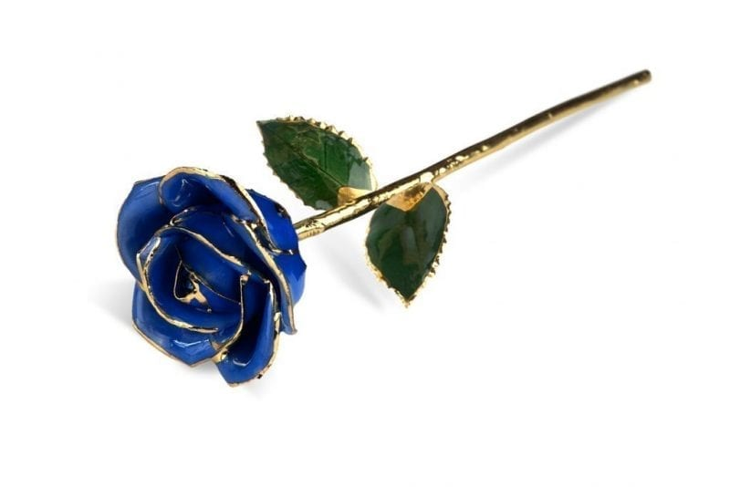 Dark Blue Rose without Premium Display Case - Infinitry Rose
