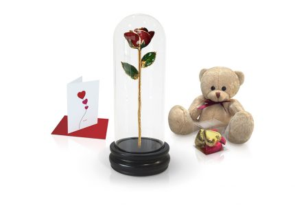 burgundy rose dome gift
