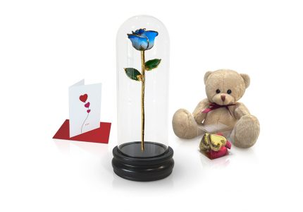 light blue two tone rose dome gift