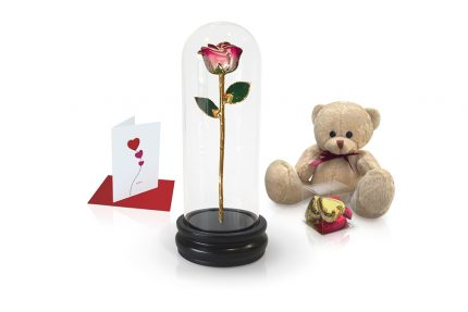 pink two tone rose dome gift