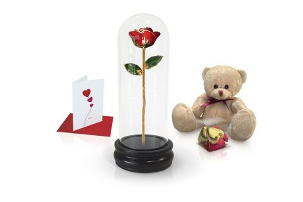 red rose dome gift