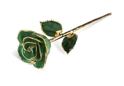 Green-Rose-1024x684