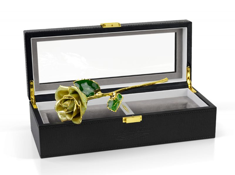 light green rose gift
