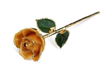 Orange Rose Gift without Premium Display Case - Infinity Rose
