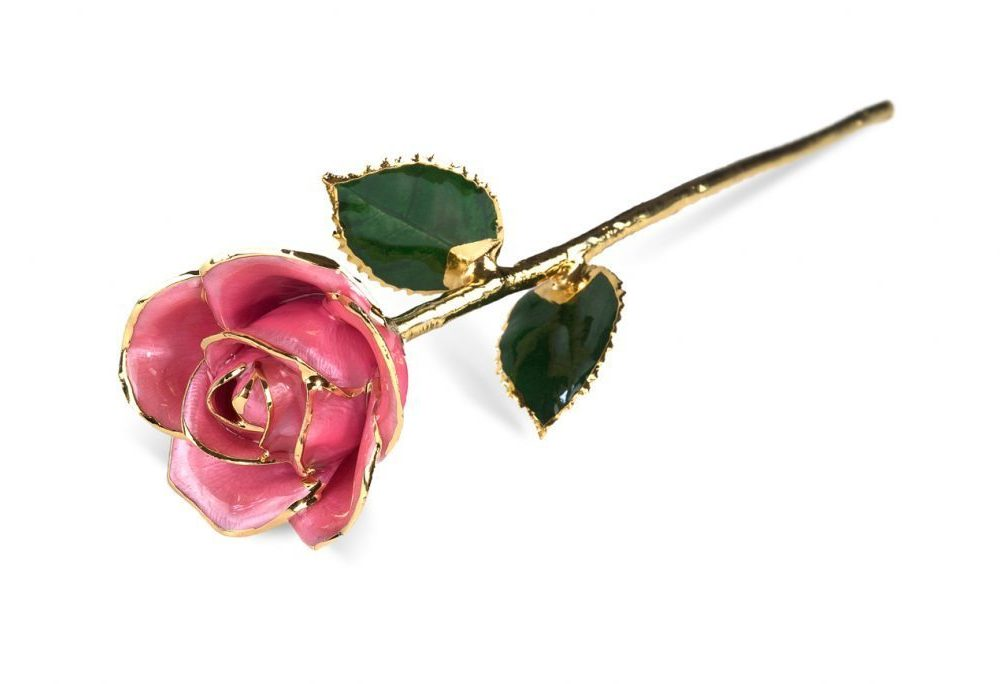 Pink Rose without Premium Display Case - Infinity Rose
