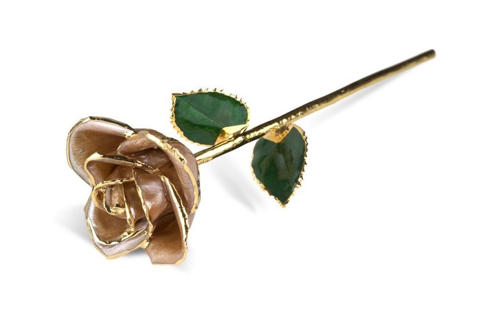 Raw Pearl Rose Gift without Premium Display Case - Infinity Rose