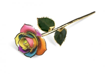 Spectrum Rainbow Rose without Premium Display Case - Infinity Rose