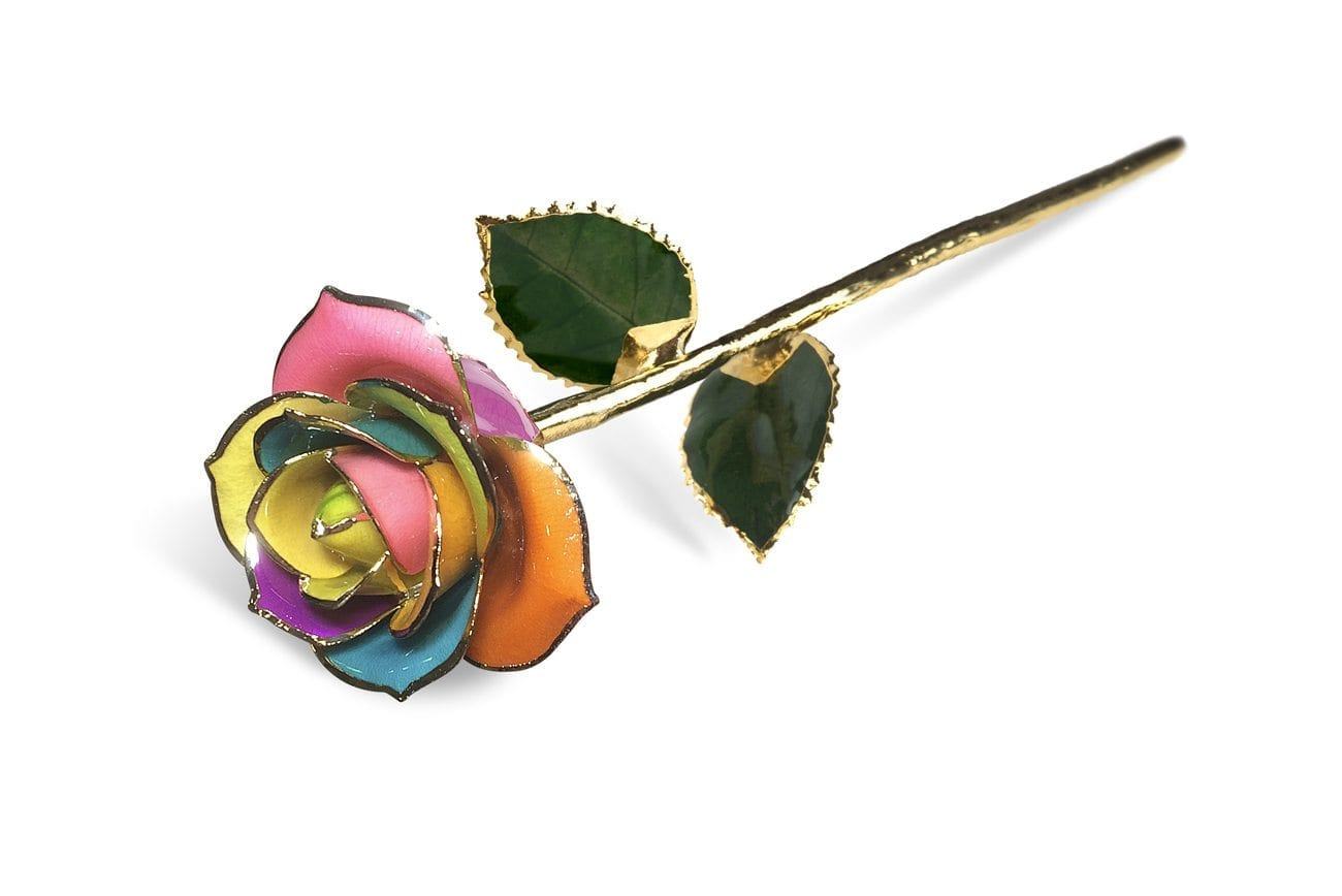 Spectrum Rainbow Rose without Premium Display Case - Infinity Rose
