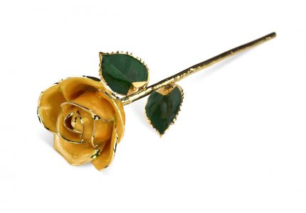 Yellow Rose without Premium Display Case - Infinity Rose