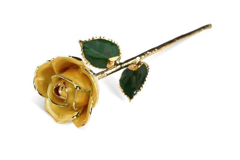 Yellow Two Tone Rose without Premium Display Case Gift Set- Infinity Rose
