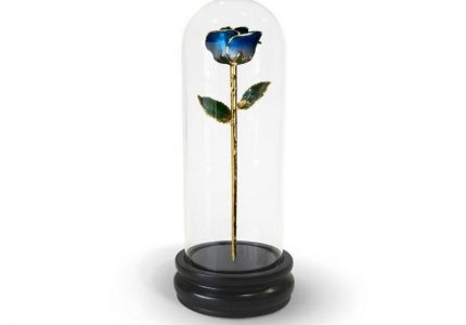 Dark Blue Two Tone Rose Gift with Premium Glass Dome - Infinity Rose