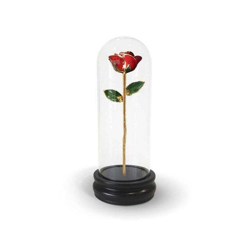 Red Rose Gift with Premium Glass Dome - Infinity Rose