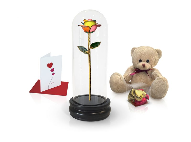 spectrum rose dome gift
