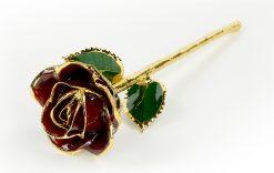 Burgundy-Rose-Only