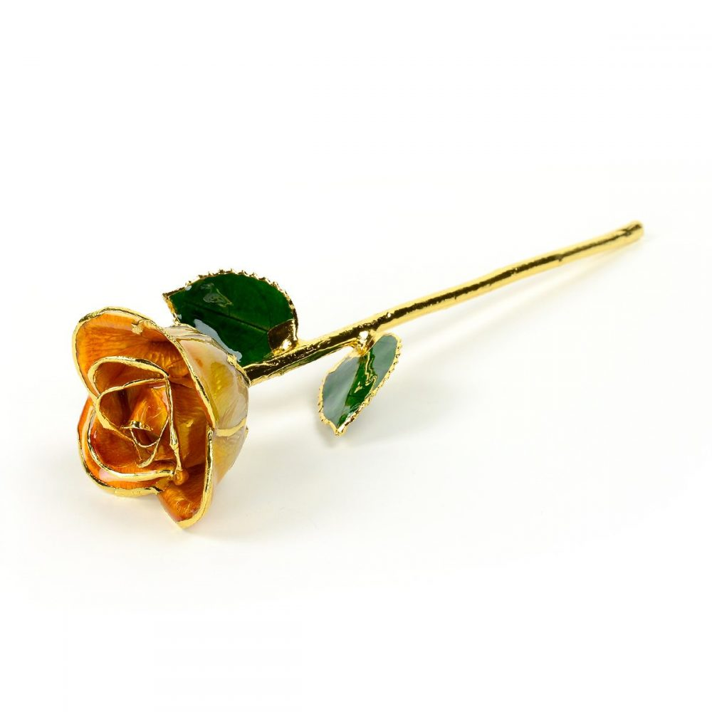 orange two tone rose gift