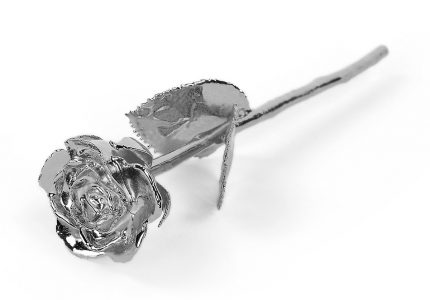 platinum rose gift
