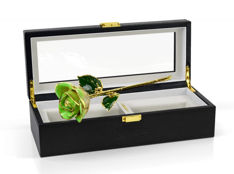 light green two tone rose gift