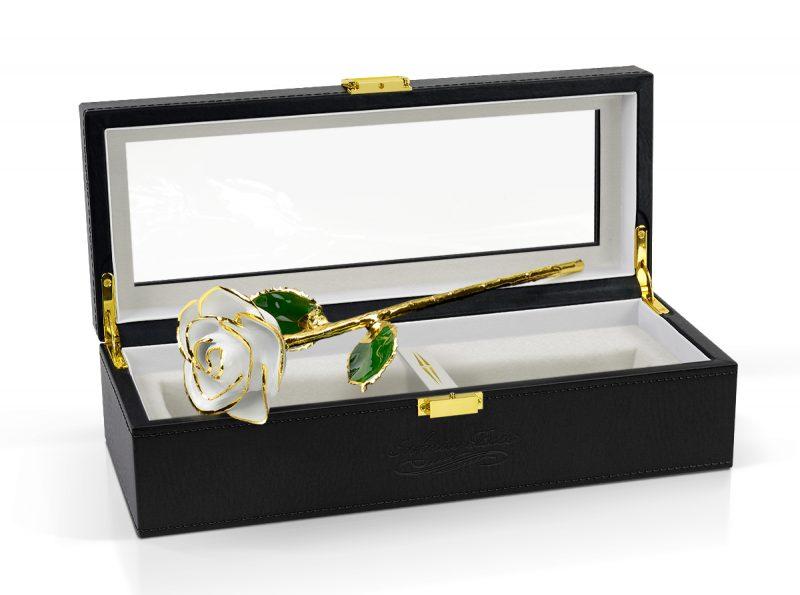 white rose gift